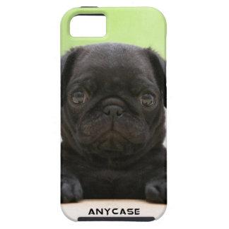 子犬のiPhone 5の場合 iPhone SE/5/5s ケース