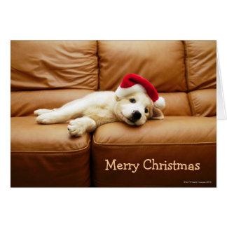 子犬はソファーにクリスマスの帽子そしてあることを身に着けています カード
