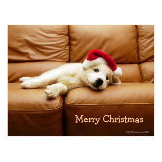 子犬はソファーにクリスマスの帽子そしてあることを身に着けています 葉書き
