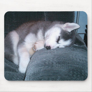 子犬はマウスパッド眠ります マウスパッド