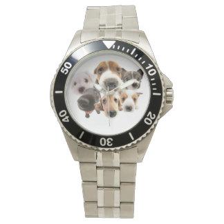 子犬は腕時計をゆっくり進ます 腕時計