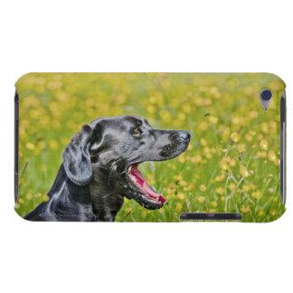 子犬16か月 Case-Mate iPod TOUCH ケース