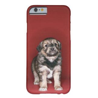 子犬 BARELY THERE iPhone 6 ケース
