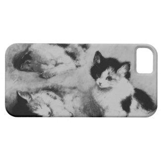 子猫が目を覚ます3 Case-Mate iPhone 5 ケース