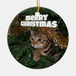 子猫のクリスマスの願い セラミックオーナメント