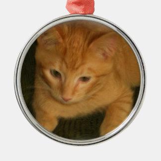 子猫の写真のオーナメント メタルオーナメント