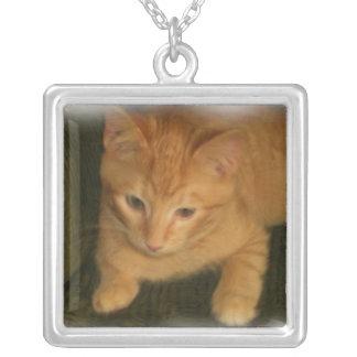 子猫の写真のネックレス シルバープレートネックレス