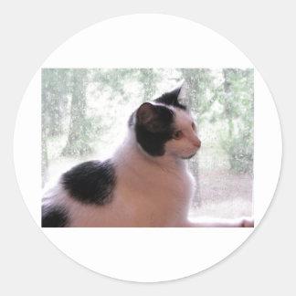 子猫の子猫 ラウンドシール