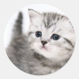 子猫の時間 ラウンドシール