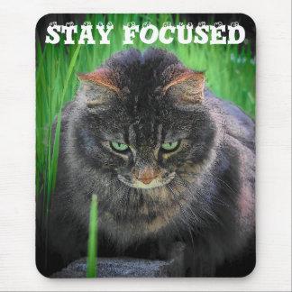 子猫を集中し続けて下さい マウスパッド
