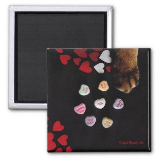 子猫キャンデーのハート愛正方形の磁石 マグネット