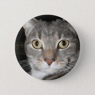子猫ボタン 5.7CM 丸型バッジ