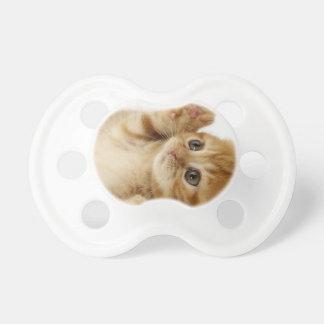 子猫猫のかわいい項目 おしゃぶり