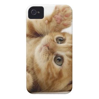 子猫猫のかわいい項目 Case-Mate iPhone 4 ケース