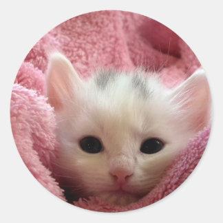 子猫猫のステッカー ラウンドシール