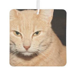 子猫猫のスマイル カーエアーフレッシュナー
