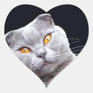 子猫猫 ハートシール