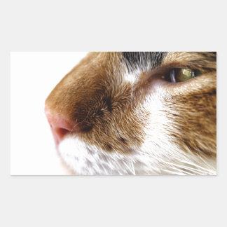 子猫 長方形シール