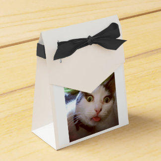 子猫Yum Yum箱 フェイバーボックス