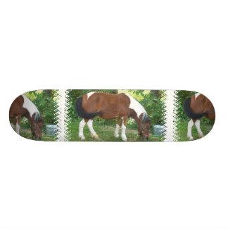 子馬のスケートボードを牧草を食べること 19.7CM スケートボードデッキ