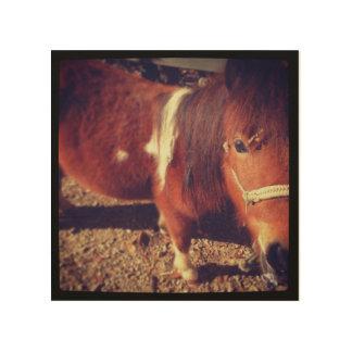 子馬のポートレート ウッドウォールアート