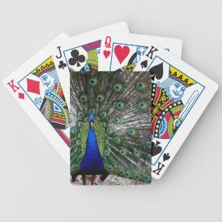 孔雀のクジャクの多彩なplayingcardsのギフト バイスクルトランプ