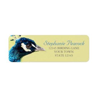 孔雀のポートレートの写真の差出人住所ラベル ラベル