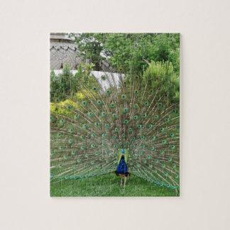 """孔雀の写真8"""" x 10""""ギフト用の箱が付いている写真のパズル ジグソーパズル"""