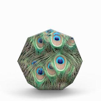 孔雀の目の広いSpreed 表彰盾