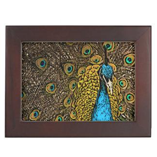 孔雀の素晴らしさのイラストレーション ジュエリーボックス