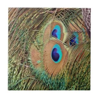 孔雀の羽の顔 タイル