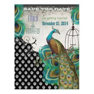 孔雀の羽の鳥かごの保存日付 ポストカード