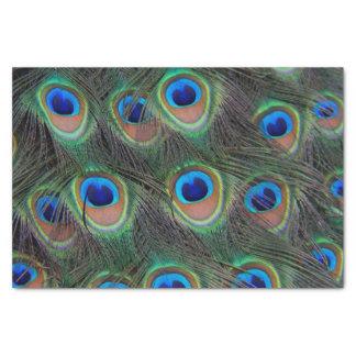 孔雀の羽パターン 薄葉紙