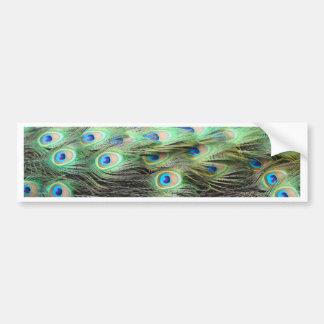 孔雀の羽 バンパーステッカー