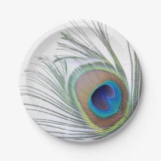 孔雀の羽 ペーパープレート