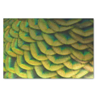 孔雀の羽IIのカラフルの自然のデザイン 薄葉紙