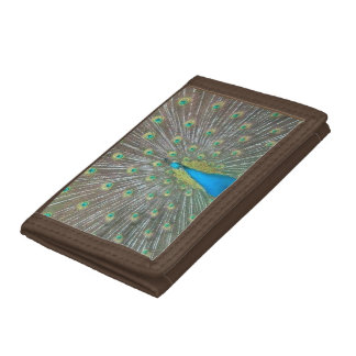 孔雀の財布