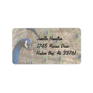 孔雀の鳥の野性生物動物の羽 ラベル