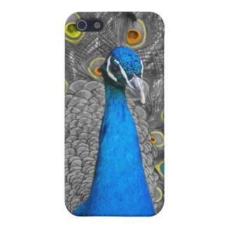 孔雀のIPHONE 4ケース iPhone 5 ケース