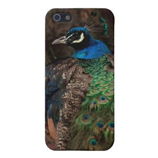 孔雀のiphone 5の場合 iPhone 5 case