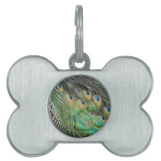 孔雀はタンの緑および青色に羽をつけます ペットネームタグ