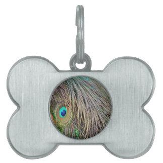 孔雀は熱血な色に羽をつけます ペットネームタグ