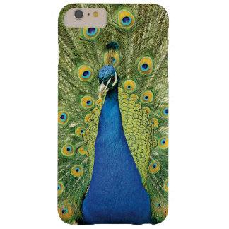 孔雀は美しいiPhone6ケースに羽をつけます Barely There iPhone 6 Plus ケース