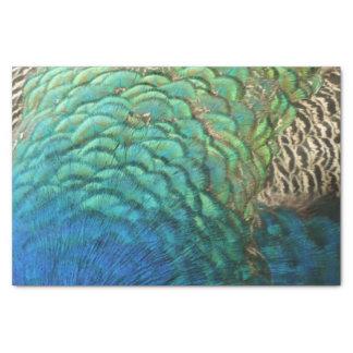 孔雀はIのカラフルの抽象芸術の自然のデザインに羽をつけます 薄葉紙