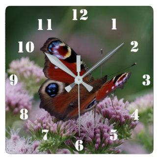 孔雀蝶時計 スクエア壁時計