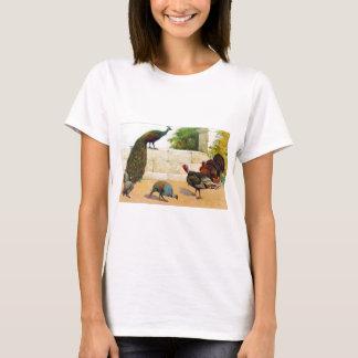 孔雀、トルコ、及びホロホロ鳥 Tシャツ