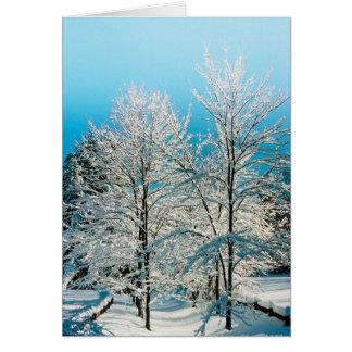 季節のシンプルな喜び: Waldenの池 カード
