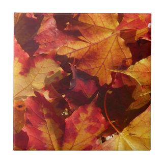 季節的な紅葉 タイル