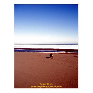 孤独なビーチ ポストカード