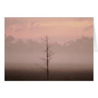 孤独な木 カード